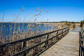 Raised walkway through marsh at Back Bay National Wildlife Refuge in Virginia Beach, Virginia. poster