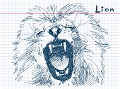 Hand drawn lion Vector. Visit my portfolio for big collection of doodles poster