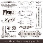 Vector decorative ornate design elements & calligraphic page decorations poster