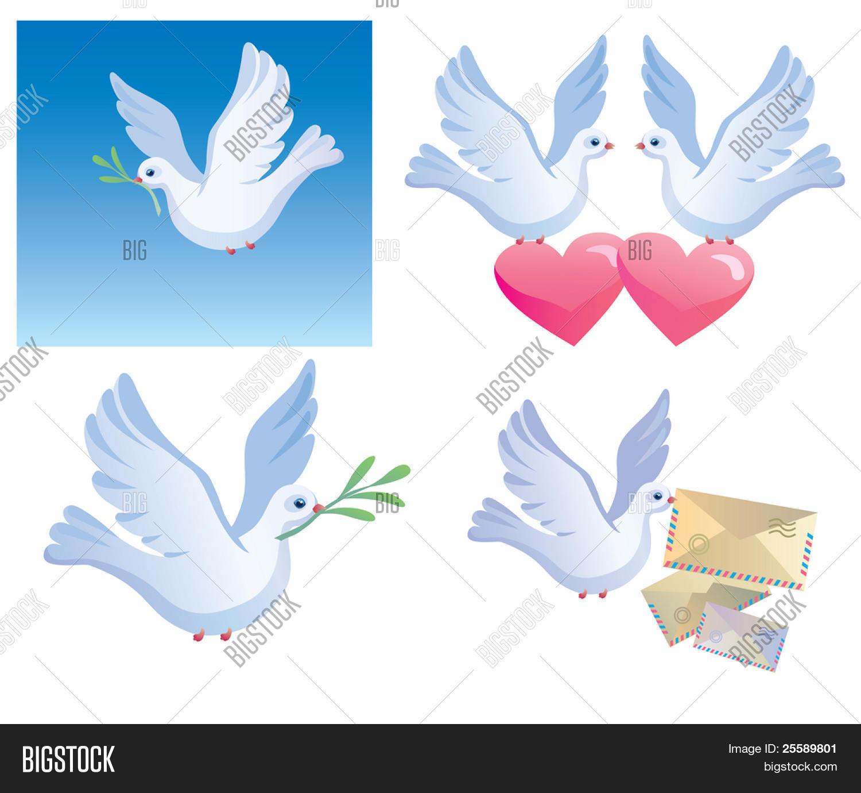 Pigeon Symbol Peace Vector Photo Free Trial Bigstock