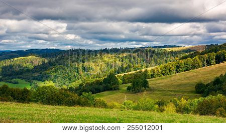 Forested Rolling Hill On Overcast Day. Beautiful Early Autumn Scenery In Mountains