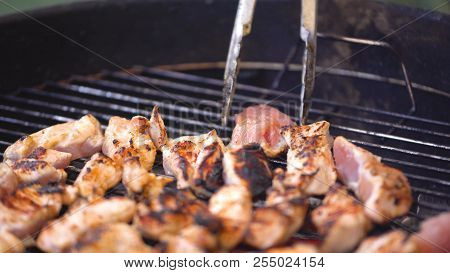 Chef Cooks Skewer Of Turkey Or Chicken Meat Shish Kebab On The Barbecue. Cooking Small Pieces Of Gri