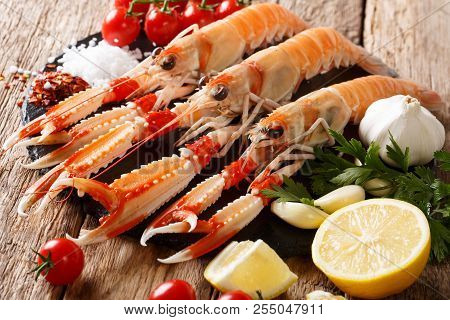 Raw Fresh Nephrops Norvegicus, Norway Lobster, Dublin Bay Prawn, Langoustine Or Scampi Close-up With
