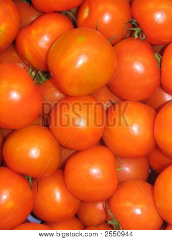 A Gathering Of Tomatoes