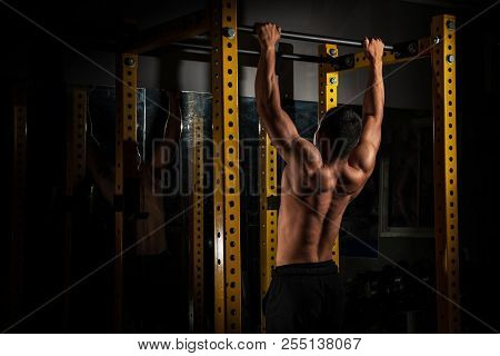 Rear View Of Healthy Muscular Young Man With His Arms Stretched Out, Strong Athletic Man Fitness Mod