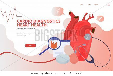 Cardio Or Cardiovascular Heart Diagnostics Concept Vector Illustration. Heart Tests Or Cardiology Di