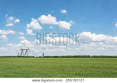 High-voltage Lines In A Field Against A Background Of A Cloudy Sky, Moldova