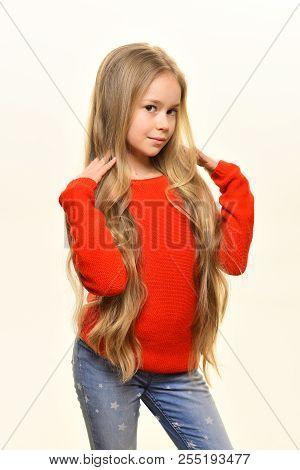 Hair Care. Look At My Hairdo. Hair Care In Hairdresser Salon. Hair Care Of Pretty Girl. Hair Care Fo