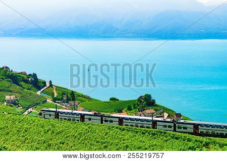 Lavaux, Switzerland - August 30, 2016: Train At Vineyard Terraces In Lavaux At Lake Geneva And Swiss