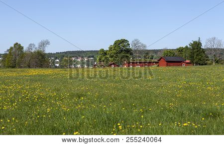 Bergslagen, Sweden On May 19. Outlook Of A Farming District In Sunshine On May 19, 2018 In Bergslage