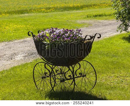 An Old Stroller, Pram Loaded With Flowers. Lawn, Path And Flowers In The Background.
