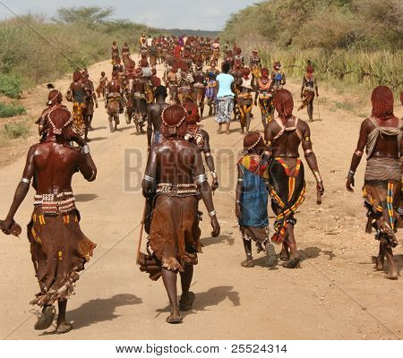 Hamaer Tribe of the Omo Valley in southern Ethiopia on their way to a Bull Jumping Ceremony.