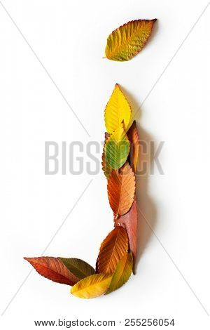 Letter J of colorful autumn leaves. Character J mades of fall foliage. Autumnal design font concept. Seasonal decorative beautiful type mades from multi-colored leaves. Natural autumnal alphabet.