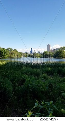 Chicago Skyline Skyscrapers As Seen From The North Pond In Lincoln Park Blue Sky With The John Hanco