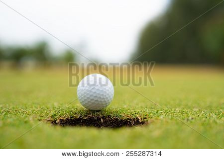 Golf Ball On Lip Of Cup Close Up, Golf Ball On The Lawn