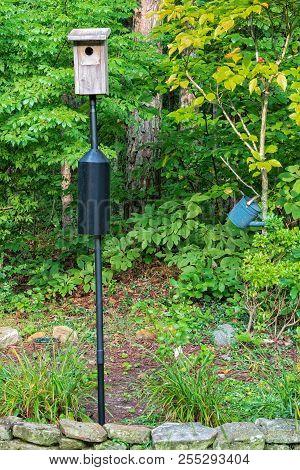 Bluebird Nesting House On Black Pole In A Garden