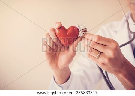 Doctor Holding Red Heart With Stethoscope, Heart Health,  Health Insurance Concept