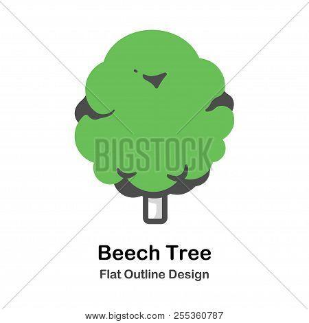 Beech Tree In Outline Flat Color Design Vector Illustration