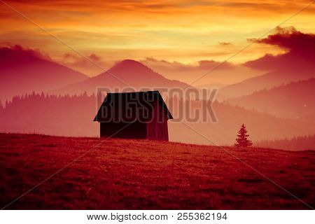 beautiful alpine sunset with firs and cottage