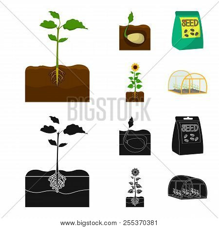 Company, Ecology, And Other Web Icon In Cartoon, Black Style. Husks, Fines, Garden Icons In Set Coll