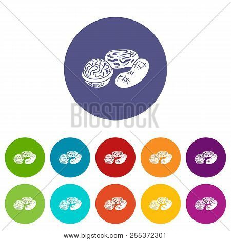 Nuts Icons Color Set Vector For Any Web Design On White Background