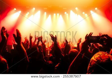 cheering crowd at a rock concer