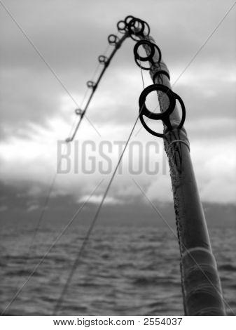 Fishing Pole Close Up