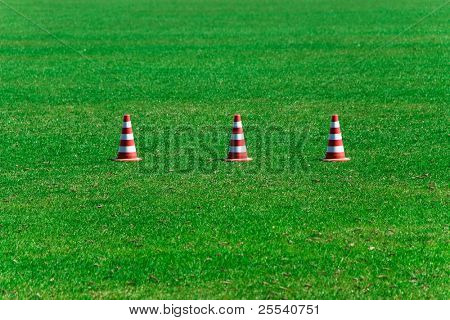 Green grass and prohibiting cones