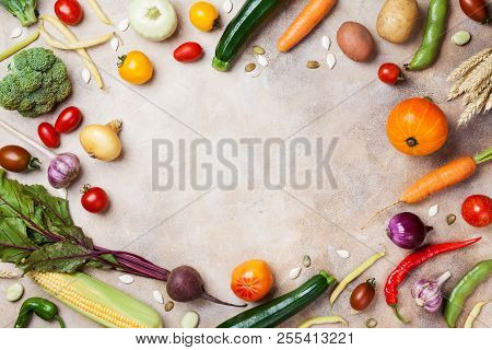 Frame Of Autumn Harvest. Vegetables And Root On Kitchen Table Top View.