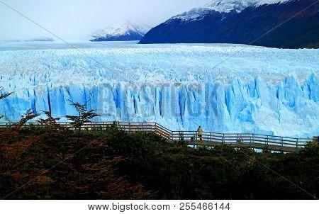 Amazing View Of Perito Moreno Glacier With The Viewing Balcony And Fall Foliage, Los Glaciares Natio