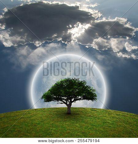 Green Tree. Bright moon. 3D rendering.