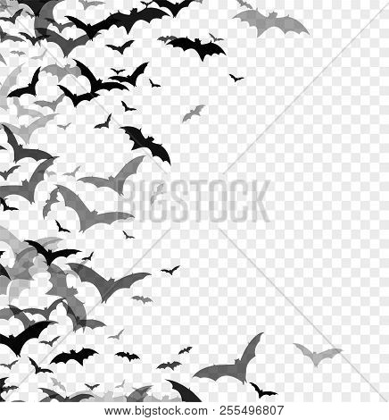 Black Silhouette Of Bats Isolated On Transparent Background. Halloween Traditional Design Element. V