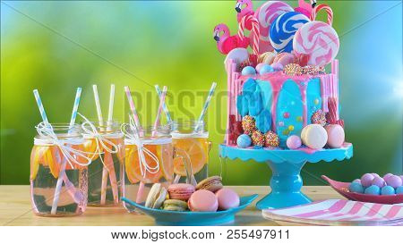On Trend Candyland Fantasy Drip Novelty Birthday Cake, Garden Oarty Setting.