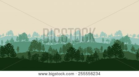 Summer Twilight Forest Trees Silhouettes Background Vector Illustration In Green Color.