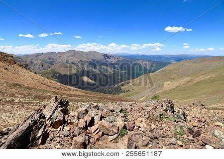 Summer At Rio Grande National Forrest In Colorado