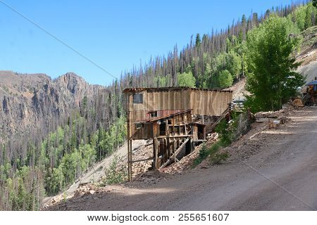 Summer At Rio Grande National Forrest In Colorado