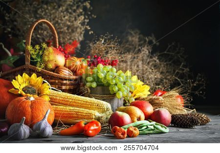 Happy Thanksgiving Day Background, Wooden Table Decorated With Pumpkins, Maize, Fruits And Autumn Le