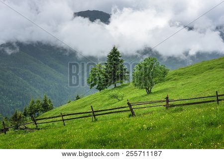 Landscape of a mountain hill at daytime. Mountain landscape in summer with cumulus clouds. Mountain meadow with fresh green grass. View at a mountain valley in summer. poster