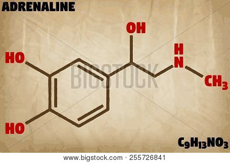 Detailed Infographic Illustration Of The Molecule Of Adrenaline.