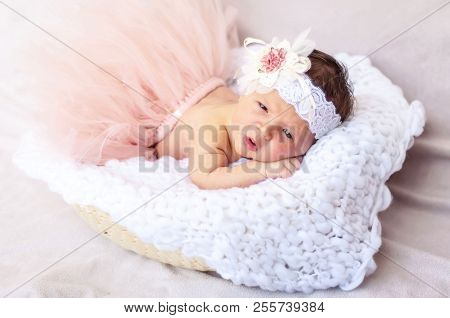 Cute Tiny Newborn Baby Princess In A Ballet Skirt With A Bow On A Basket With Plaid. Soft Tones. Ado