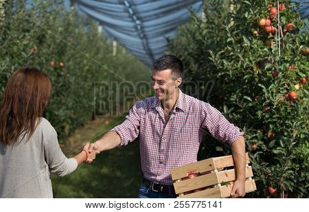 Happy Farmers Shaking Hands In Modern Apple Orchard
