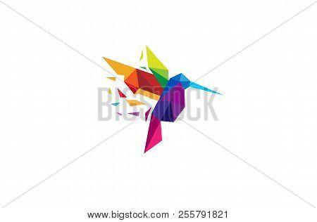 Creative Colorful Humming Bird Logo Symbol Vector Design Illustration