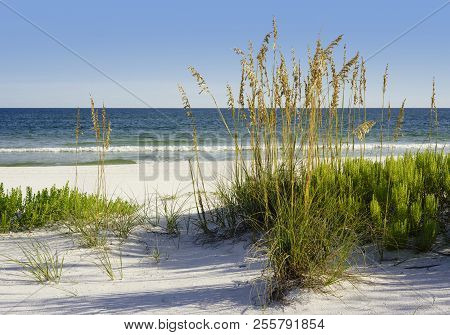 Beautiful Sunny Day At A White Sand Beach With Sparkling Gulf Of Mexico Waters In Pensacola, Florida
