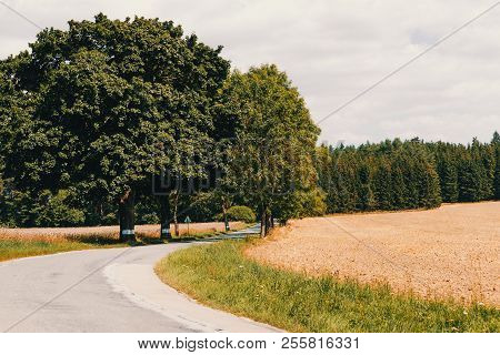 Rural Road On Beautiful Spring Rural Landscape With Field