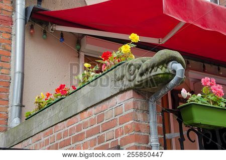 A Stone Dragon With Flowers On Railing Of The Stairs In Old Town Gdansk (danzig) Poland. Decorative