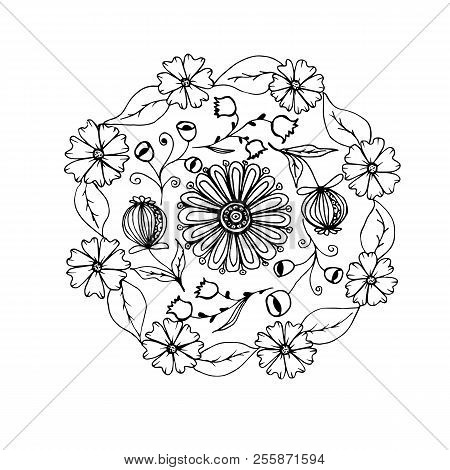 Hand Drawn Mandala With Different Flowers Anti Stress Therapy Pattern Coloring Book Raster