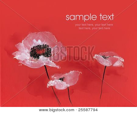 Painted watercolor white poppies on red background