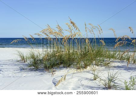 Pristine Pensacola, Florida White Beach And Gulf Of Mexico
