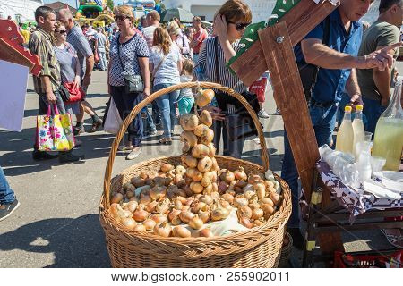 A Large Basket With Onions At The Regional Festival-fair Luk-luchok August 25, 2018 In The City Of L