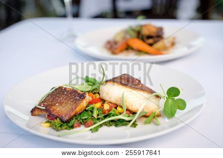 Pan Roasted Sable Fish With Spring Vegetables On A White Plate In A Restaurant.